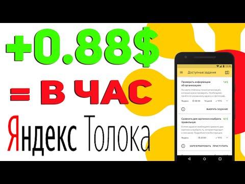 Сколько можно заработать в Яндекс Толоке | Реальный заработок в Толоке
