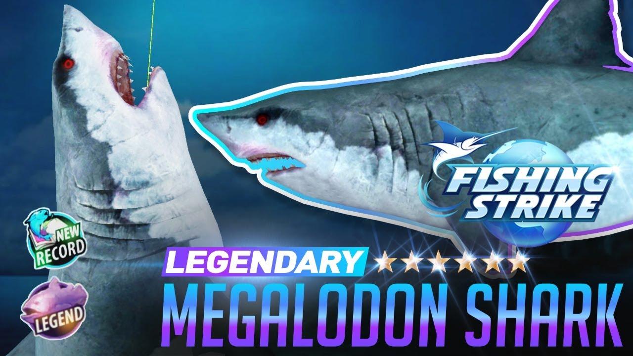 Fishing Strike Legendary Fish Predator Tiger Shark - YouTube |Legendary Sharks