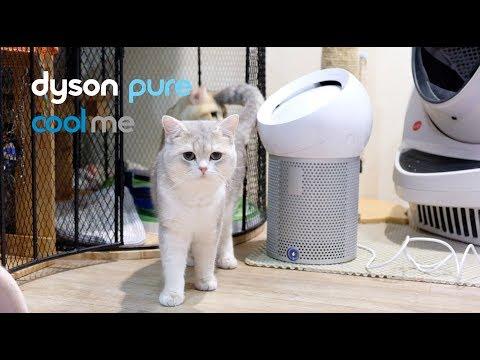 รีวิว Dyson Pure Cool Me | พัดลมกรองอากาศส่วนตัว เจ๋งอะ - วันที่ 21 Jul 2019