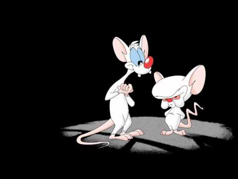 Pinky and the Brain Theme Song Intro HQ with Lyrics