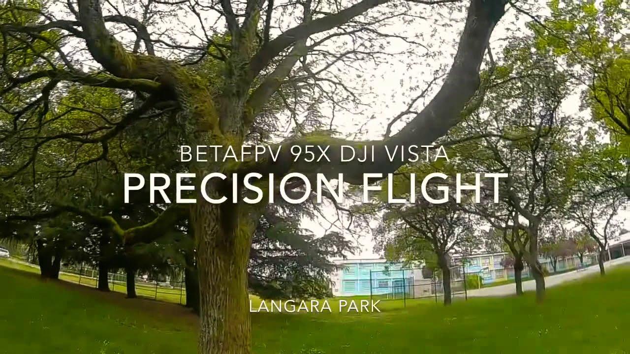 Precision Flight - BetaFPV 95x Dji Vista фото