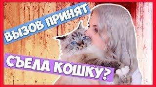 Вызов принят - Тилька Съела кошку (челлендж #1)(В своем видео