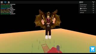 Playing admin admin with my friend (roblox)