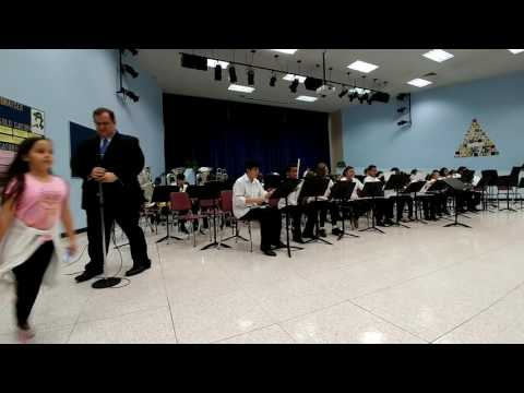 Sawgrass Springs Middle School Advanced band