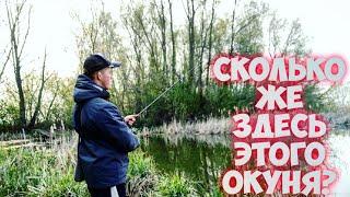 ОКУНЬ ЯРОСТНО КЛЮЕТ ПОСЛЕ НЕРЕСТА ЛОВЛЯ ЩУКИ и ОКУНЯ на ДЖИГ Рыбалка на Ультралайт