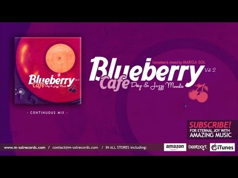 Blueberry Cafe Vol.2 - Deep & Jazzy House Moods - Continuous MIX