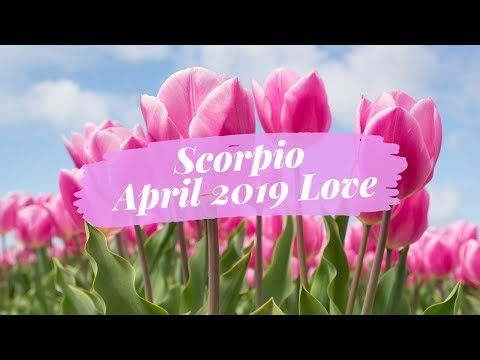 Scorpio, They Are Sorry For Not Acting Like Themselves ❤️ April Love Reading By Nicole!