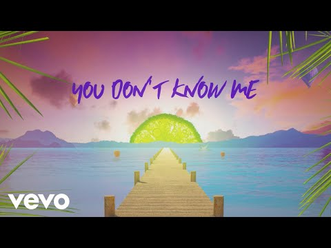 Sigala, Shaun Frank, Flo Rida – You Don't Know Me ft. Delaney Jane