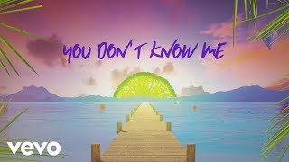Sigala, Shaun Frank, Flo Rida - You Don't Know Me (Lyric Video) ft. Delaney Jane