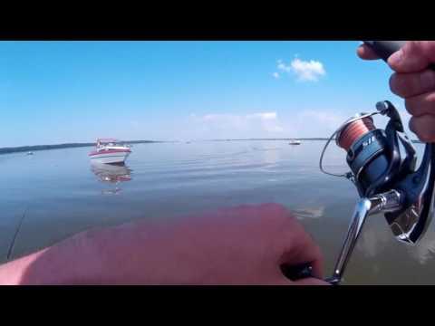 ловля сома на джиг на оке видео