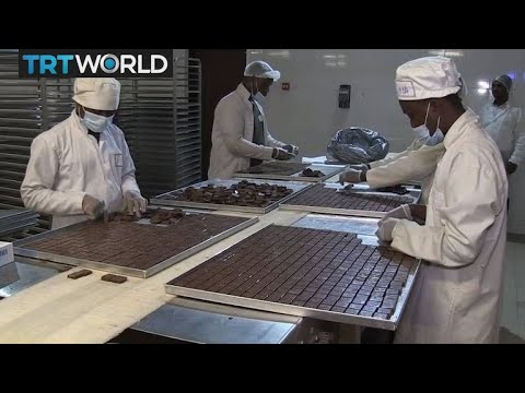 Ghana Cocoa Industry: Ghanaian chocolate production contiunes to rise