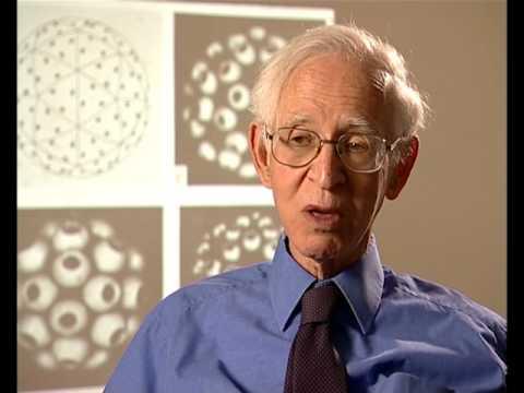 Aaron Klug - Gene conversion and gene targeting (77/120)