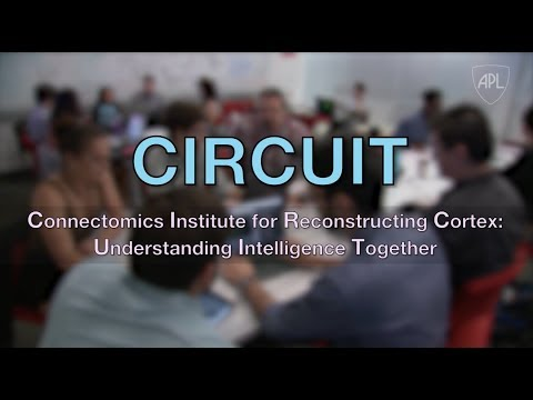 Mapping the Brain: Johns Hopkins APL's CIRCUIT Program