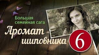 Аромат шиповника 6 серия - сериал, мелодрама