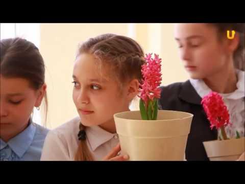 Цветы жизни Школа №85 г