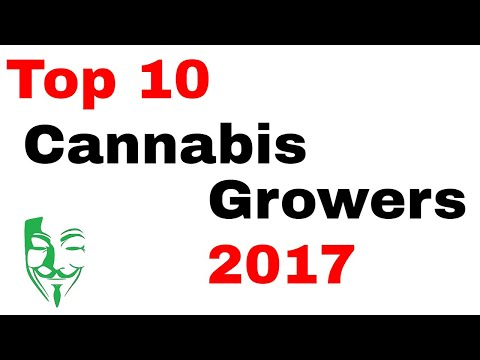 Top 10 Cannabis growers on YouTube 2017!!! The BEST Weed growers on this platform.