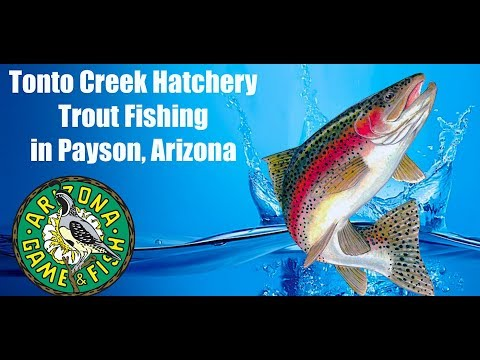 Tonto Creek Hatchery - Trout Fishing In Payson, Arizona