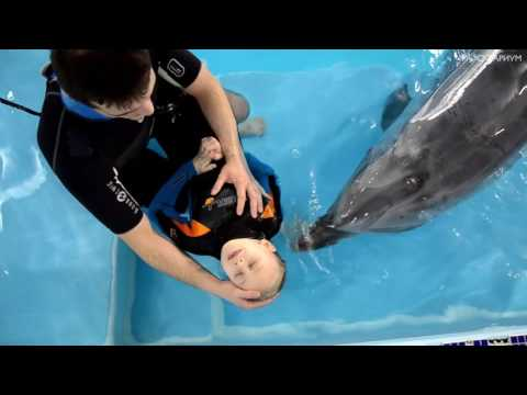 Дельфинотерапия Москвариум