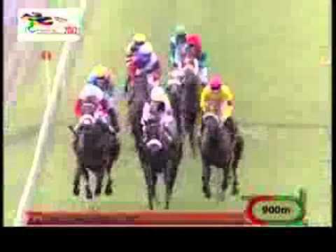 Week-End International 2012 - Turf - Mauritius - All Races