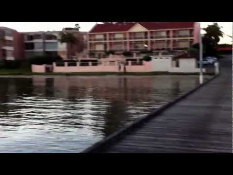 Big Swan River Crabs