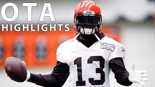organized-team-activities-ota-highlights