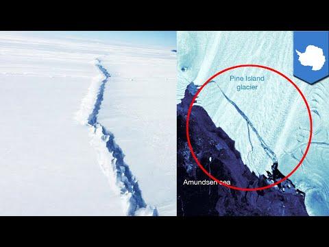 City-sized iceberg breaks off glacier in Antarctica - TomoNews