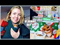 DECORATING HAMSTER CAGES | SYRIAN HAMSTER FUN | Vlogmas