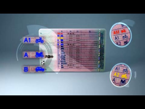 Führerschein Listennummer