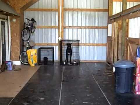 Aaron and Lenees Barn Loft - YouTube