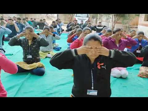 NSS  CAMP : Yoga & Exercise Daily Routine