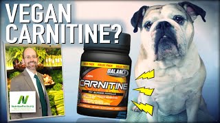 Carnitine, Carnosine & Creatine OH MY! | Dr Michael Greger of Nutritionfacts.org