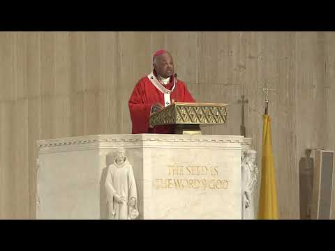 Mass of the Holy Spirit Homily 2019
