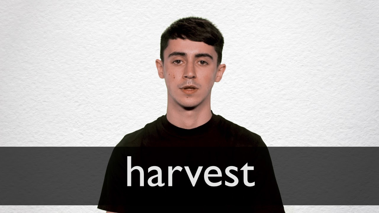 How to pronounce HARVEST in British English