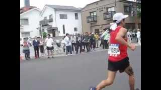 仙台国際ハーフマラソン大会2015 13キロ地点付近の猫ひろしの走り!