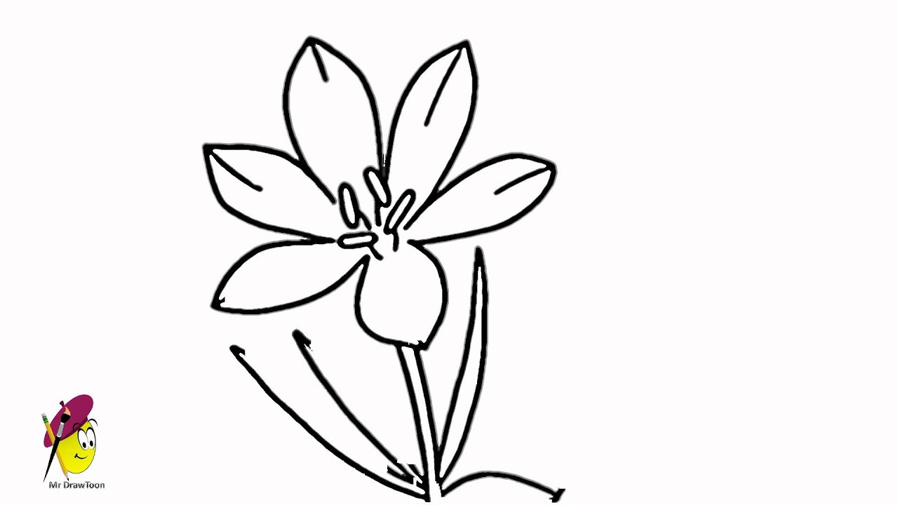 blossom crocus flower how to draw flowers youtube