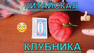 Офигевшая клубника из Китая за 100 рублей