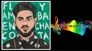 Daviles De Novelda - Flamenco y Bachata (Audio)(New Bachata 2021💥)