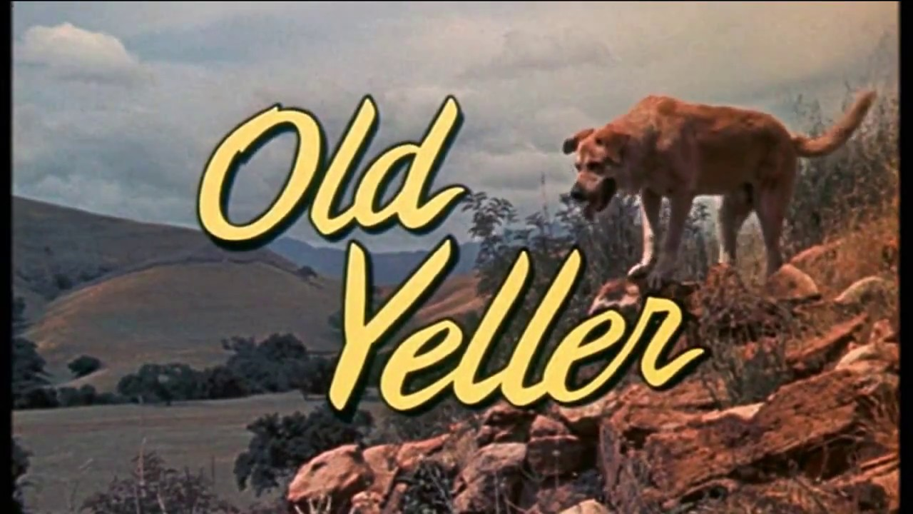 Walt Disney S Old Yeller Old Yeller Theme Song