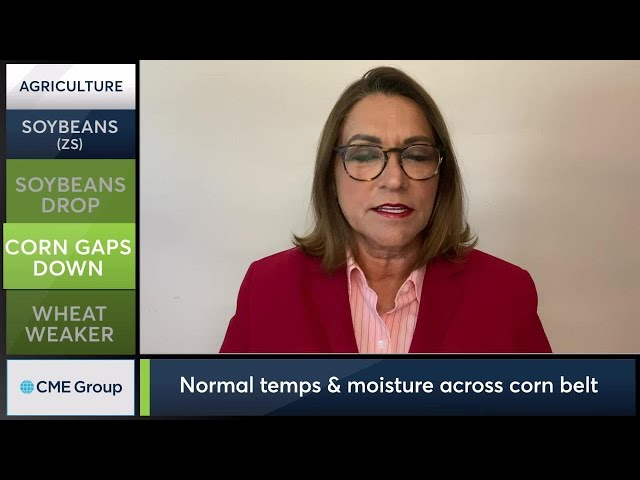July 13 Grains Commentary: Virginia McGathey