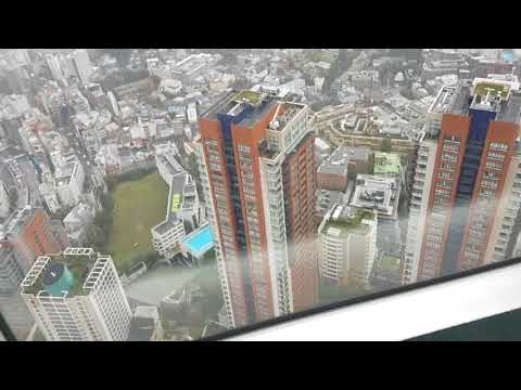 Roppongi Hills Mori Tower Observation Deck 25 oct 2017