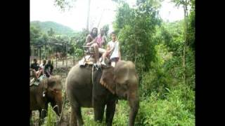Global Teens conquer the beast in the jungle of Thailand - YMCA NYC