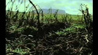 The Great Famine - Part 1 of 2 (BBC 1995)