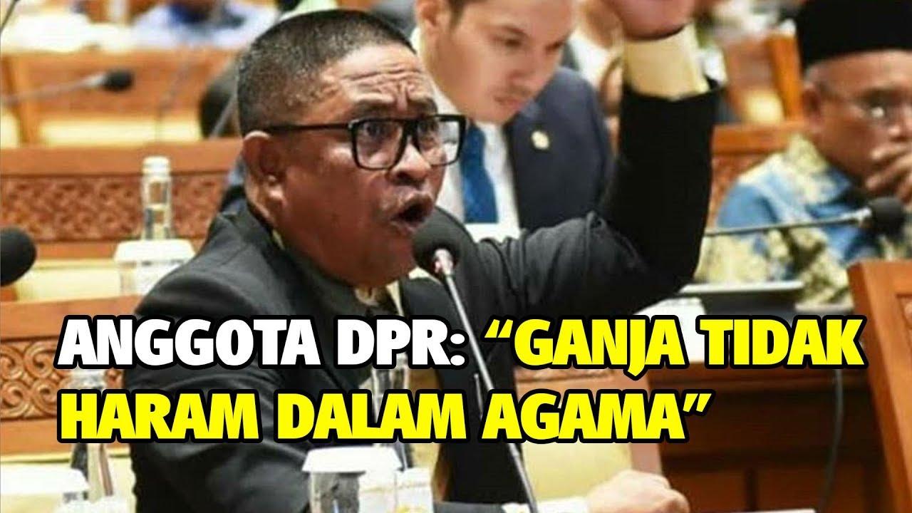 Denny Siregar Sebut PKS Halalkan Ganja, HNW Berang: Kembali Hoax Disebar