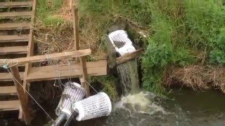 Shannon Waste Water Treatment Experience NZ (Pt 1)