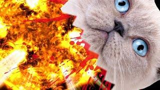 Das Kartenspiel mit explodierenden Katzen