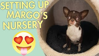 Baby Nursery for my Margo the tinniest Chihuahua, due in 5 days! | Sweetie Pie Pets by Kelly Swift