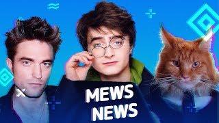 Mews News   Кошки в кино, Гарри Поттер, Роберт Паттинсон   котоновости