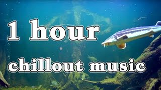 1 hour of relaxing music - chillout | downtempo mix
