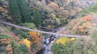 熊本県五家荘の紅葉