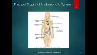 Lymphatic Disease List